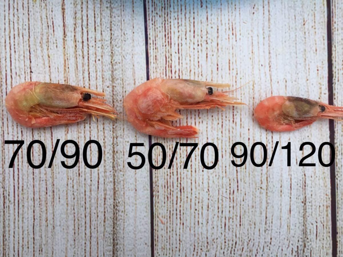 Креветки камчатские морской заморозки 70/90 - 1кг